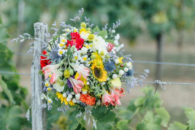 Hochzeit-Burgenland-Trachten-Wien-Hochzeitsfotografie-Hannersberg-14