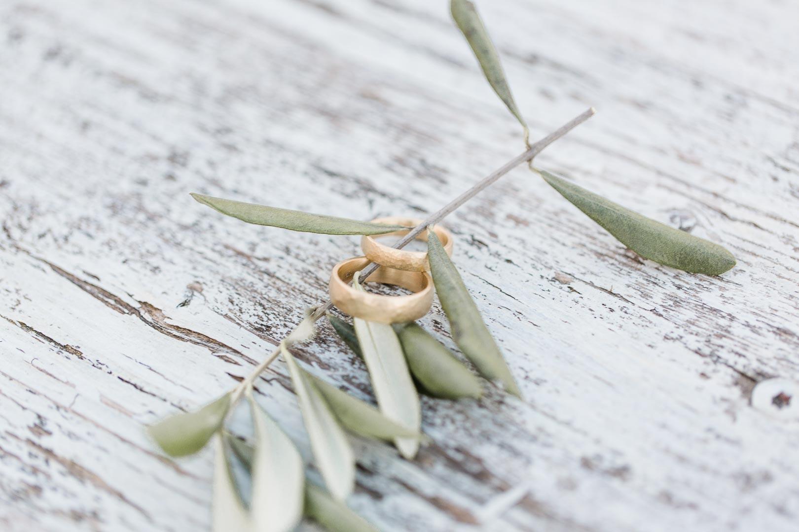 Goldene Eheringe auf einem Olivenzweig